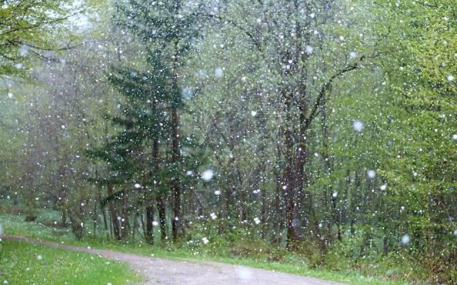 На Корсику обрушился мощный снегопад