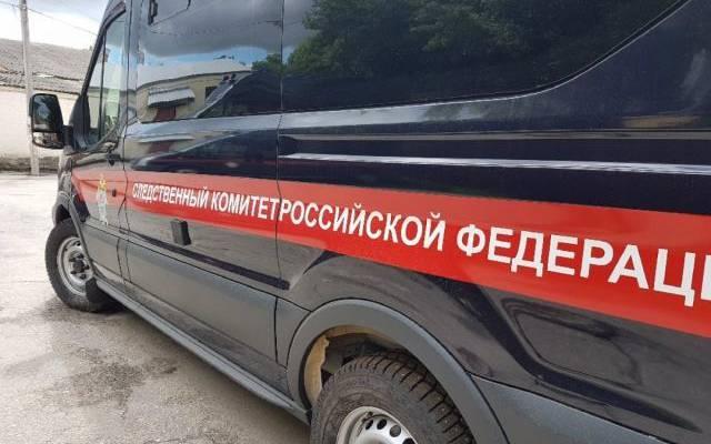 В Челябинске заведено дело по факту похищения ребенка отцом
