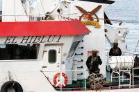 Власти Камеруна пока не нашли российских моряков с захваченного судна