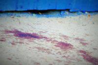 В Башкирии школьницу подозревают в убийстве младшей сестры