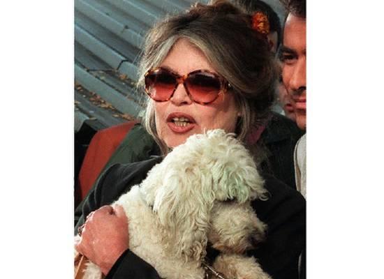 Брижит Бардо раскритиковала практику поедания собак во Французской Полинезии