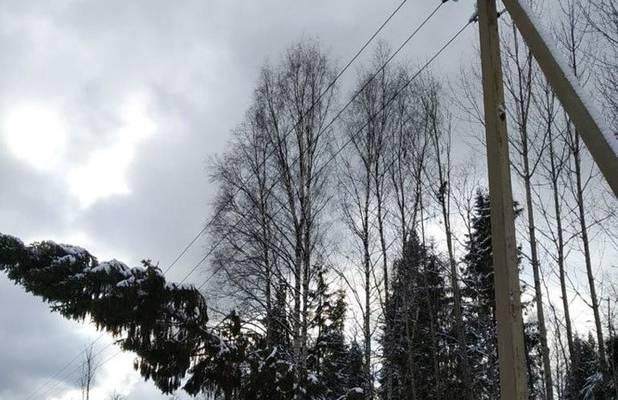 Жизнь без электричества: какие уроки можно извлечь из Тверского урагана