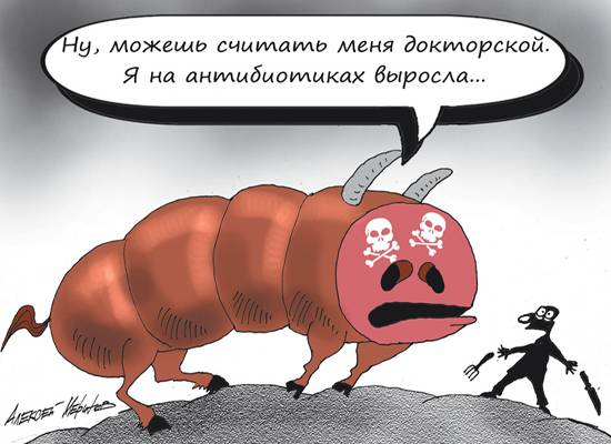 В России собрались ограничить использование антибиотиков - МК