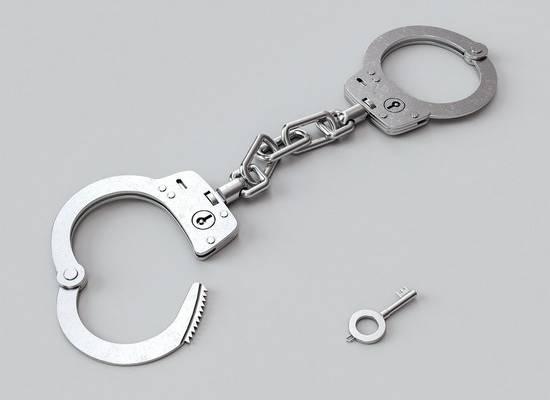 Прокуратура выступила против ареста ливанца, укравшего больную дочь у россиянки