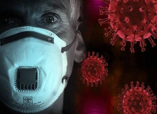 Число погибших от коронавируса в России выросло до 24