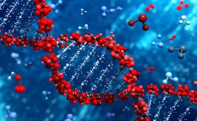 Редактирование генома. Величайшее благо или абсолютное зло?