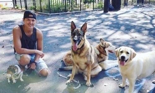 «Люди утверждают, что им нужна помощь больше, чем собакам». Казахстанский боксер-полицейский из Нью-Йорка ответил на критику