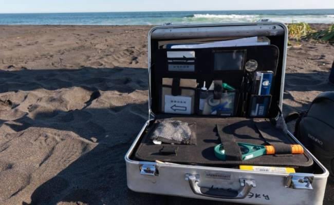 В Москву с загрязненного побережья Камчатки отправили более 200 кг проб