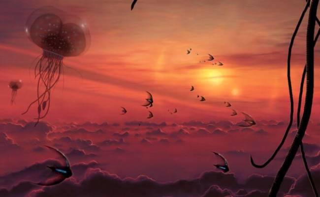 Как человечество отреагирует на открытие инопланетной жизни?