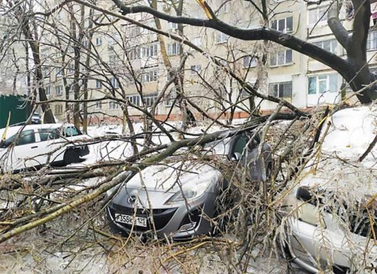 Сумма ущерба от циклона в Приморье увеличилась