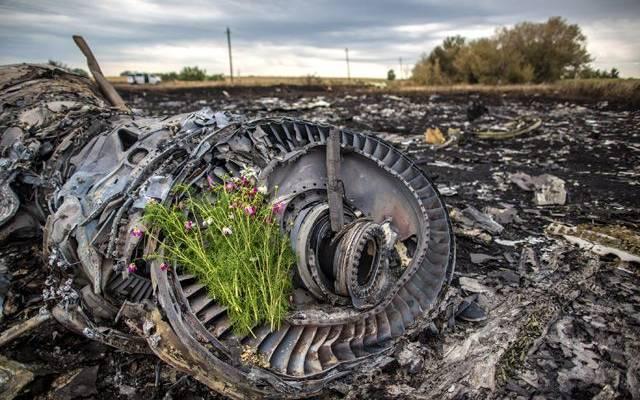 Украина заявила о возможности получения доступа к делу MH17