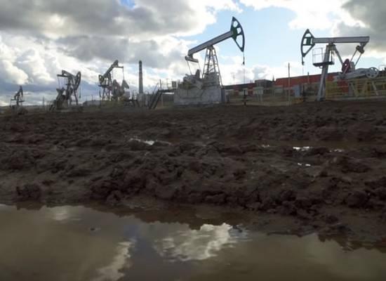 Путин пояснил, как будет расти спрос на нефть в ближайшие годы