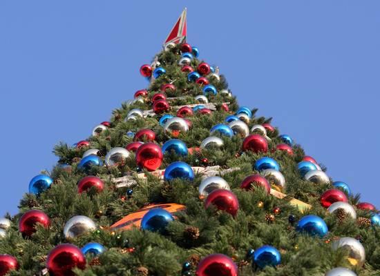 Владимирская область объявила 31 декабря выходным