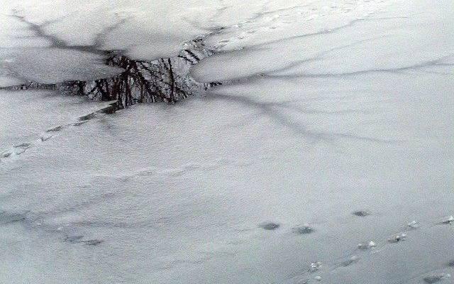 В заливе Мордвинова спасли 26 рыбаков с отколовшейся льдины