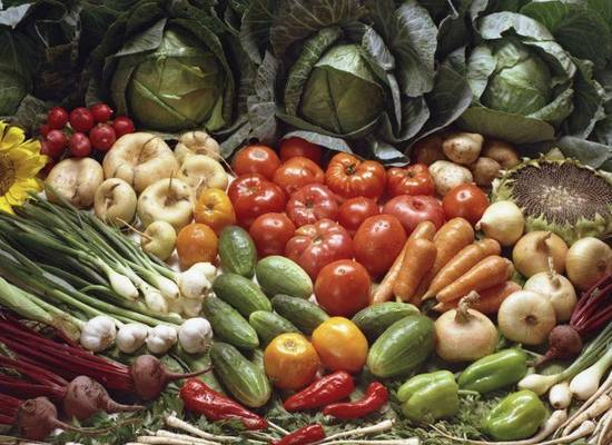 Осенью Россия может недополучить треть урожая овощей и фруктов