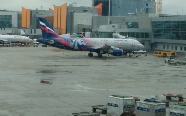 В Шереметьево сел самолет со сработавшим датчиком открытия грузового отсека