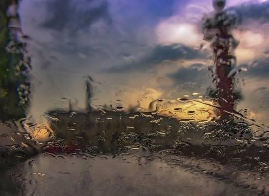 В Петербурге закрыли сады и скверы из-за прогноза о сильном ветре