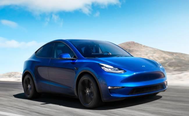 Tesla отложила запуск своего автозавода в Германии из-за змей