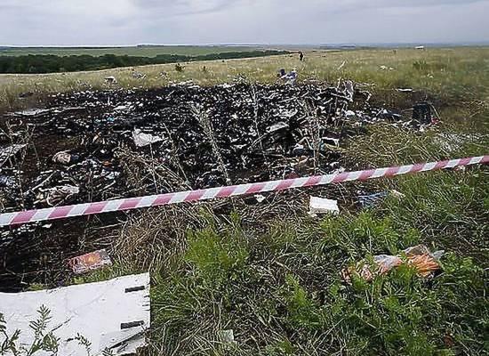 """При крушении """"Боинга"""" MH17 над Донбассом в багаже выжили голуби"""