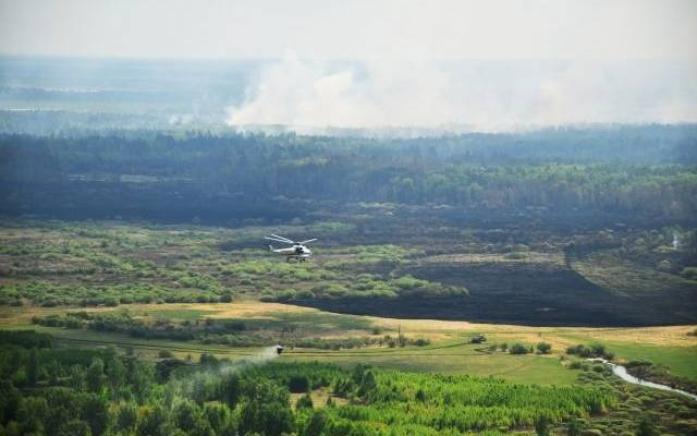 В России за сутки ликвидировали 99 природных пожаров