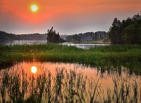 Летнее солнцестояние-2021: факты про самый светлый день в году