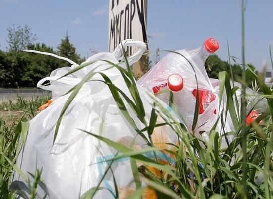 Кабмин одобрил идею о штрафах за выброс мусора из машины