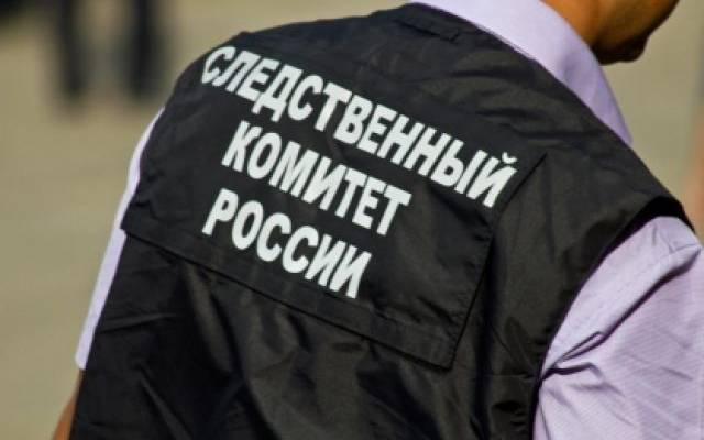 В Ростове расследуют убийство женщины и ее годовалой дочери