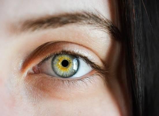 Диетологи развеяли мифы о пользе черники для глаз